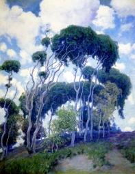Laguna Eucalyptus, 1917