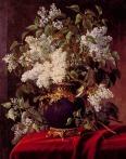 White_Lilacs